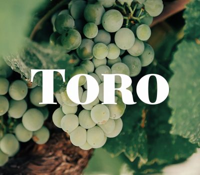 toro-lateral